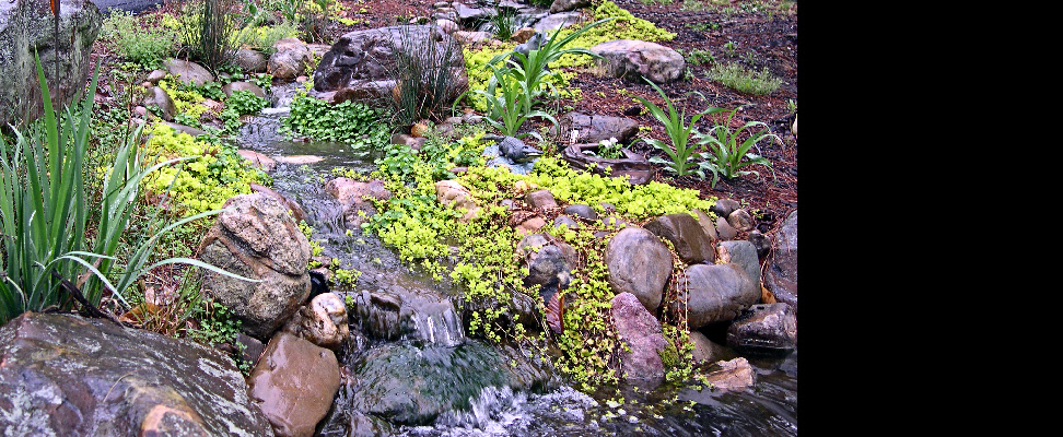 A very natural-looking stream complement a small pond at the home entry