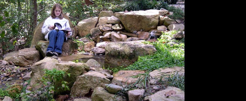 Streamside seating boulder at a remoth Chapel Hill cottage